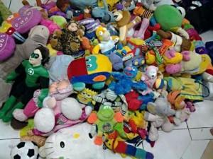 Enviro toys